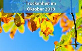 Trockenheit Oktober 2018