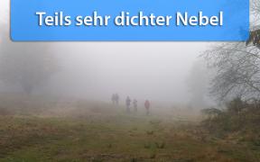 Dichter Nebel Anfang November 2018