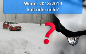 Wintertrend 2018/2019