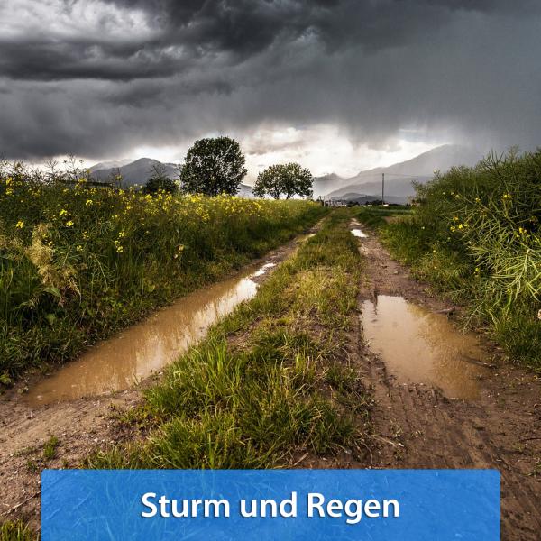 Ende November 2018 Sturm und Regen