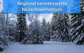 Neuschnee Anfang Januar 2019