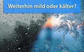 Wintertrend Anfang und Mitte Februar 2019