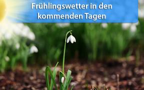 Frühlingswetter ab 13. Februar 2019