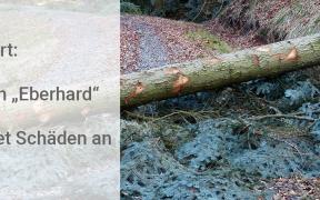 Orkan Eberhard richtet Schäden an
