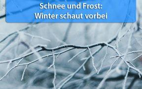 Schnee und Frost Mitte April 2019