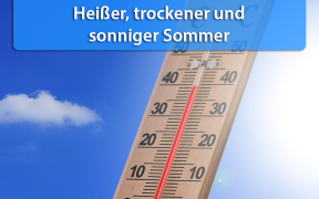 Rückblick Sommer 2019