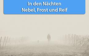 Nebel und Frost Hoch Hanneke September 2019