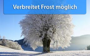 Frost Anfang Oktober 2019