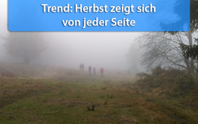Wettertrend Anfang November 2019