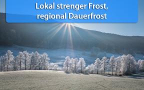 Frost Ende Januar 2020