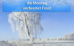 Frost Hoch Ekart Ende Januar 2020