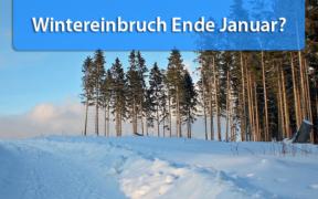 Wintereinbruch Monatswechsel Januar / Februar 2020