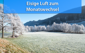 Frost Anfang Dezember 2020