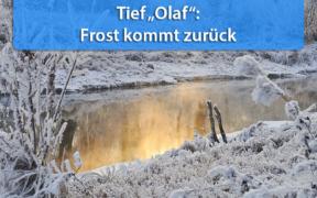 Frost Monatswechsel Januar-Februar 2021