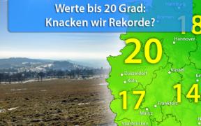 Zu warm Ende Februar 2021