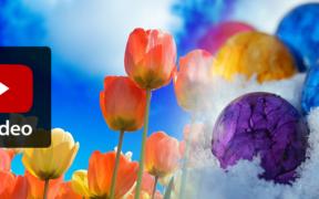 Wärme Ende März und weiße Ostern 2021