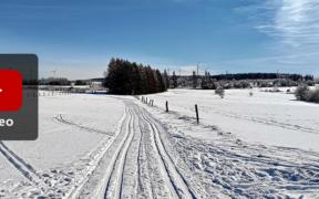 Wintertrend 2021/22